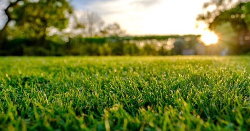 Beautiful Lawn - Top Rated Lawn Care Services in Roy, Utah