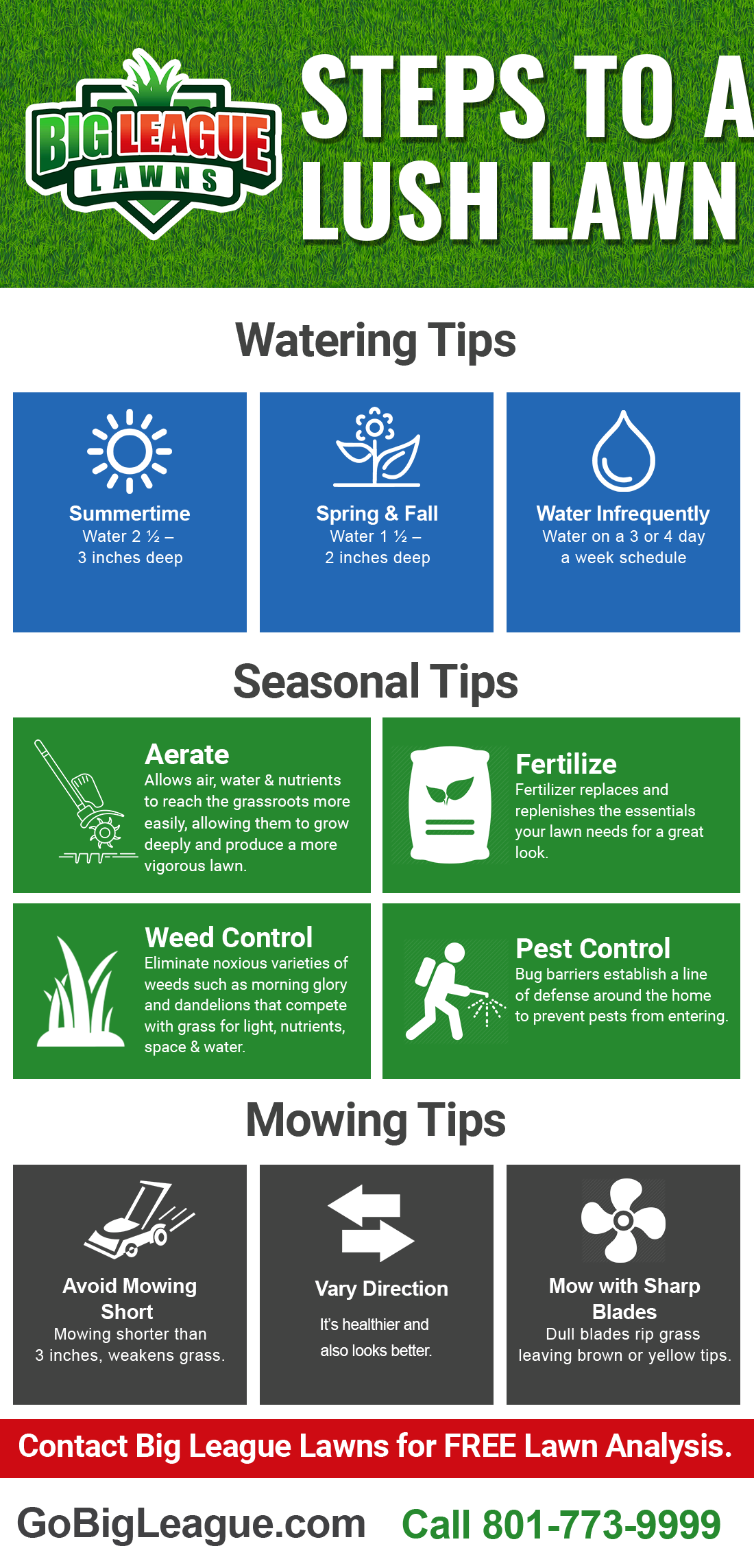 Steps to a lush lawn info-graphic - Big League Lawns in Ogden, Utah