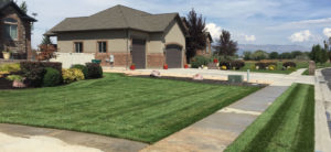 Lawn care before and after gallery